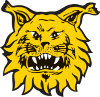 logo_tampereenilves_svg